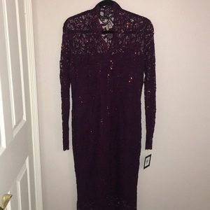 Lacy Stretchy Sequin Dress